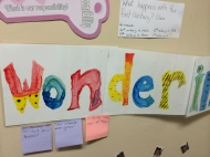 Our wondering wall.